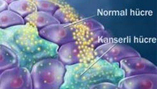 Kanser Taramaları Tüm Hızıyla Devam Ediyor