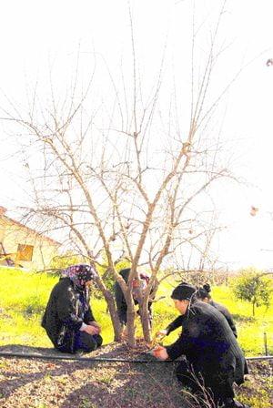 Tarım işçileri siyah giydi