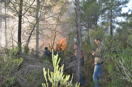 Köyceğiz ilçesinde orman yangını devam ediyor