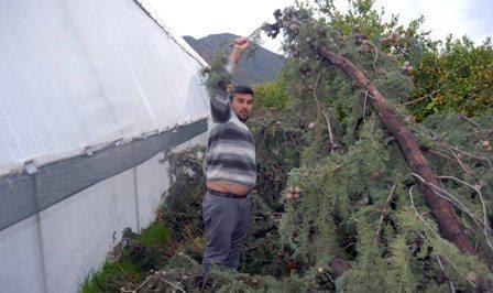 OMR 0213 - Fırtına ve yağmur yaşamı olumsuz etkiliyor